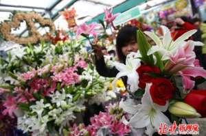 情人节送女友什么花合适 别送错!这些花都有什么含义?