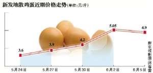 """价高卖不动""""火箭蛋""""暂停涨 价格上涨因素并未消除"""