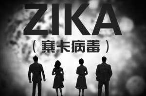 卫计委:寨卡病毒在北京市广泛传播风险小