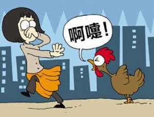 北京新增一例人感染H7N9病例